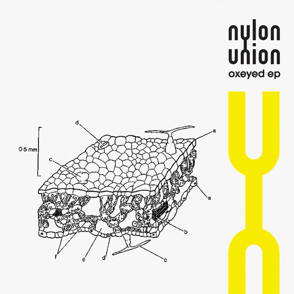 Nylon Union – Oxeyed EP